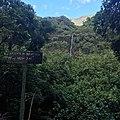 Papenoo vallée.jpg