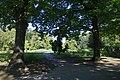 Parcul Herastrau - cadru natural.jpg