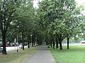 Park Travno.JPG