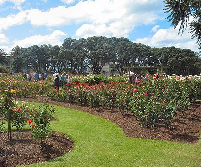 How to get to Parnell Rose Garden with public transport- About the place