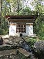 Paro Taktsang, Taktsang Palphug Monastery, Tiger's Nest -views from the trekking path- during LGFC - Bhutan 2019 (321).jpg
