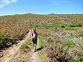 Parque Natural de Montesinho Porto Furado trail (5733166138).jpg