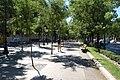 Paseo de la Castellana (Madrid) 08.jpg