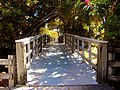Passerelle vers la plage, reposant...Footbridge to the sea, Dania Beach, Florida - panoramio.jpg
