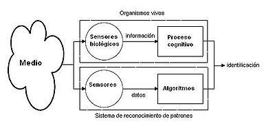 El sistema intenta imitar a los sensores biológicos y procesos cognitivos de los seres humanos