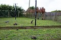 Peak Wildlife Park 2017 011.jpg