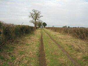 Peddars Way - Image: Peddars Way Little Cressingham