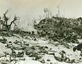 Peleliu USMC Photo No. 2-10 (21508904022).jpg