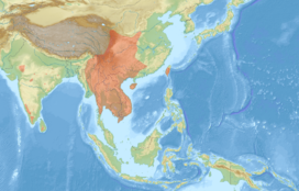 Petaurista philippensis distribution map.png