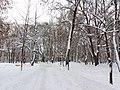 Petrovskyi Park, Poltava (12.01.19) 01.jpg