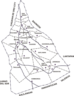 Talakag, Bukidnon - Political map of the municipality showing its 29 barangays