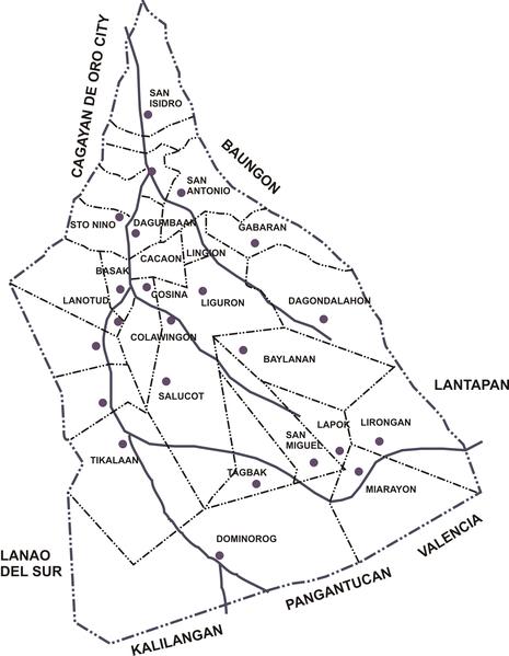 Fileph Bukidnon Talakag Political Map
