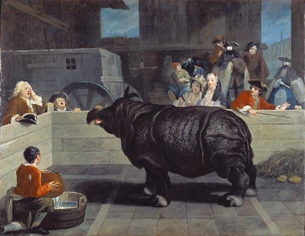 Pietro Longhi Rhinoceros 1751