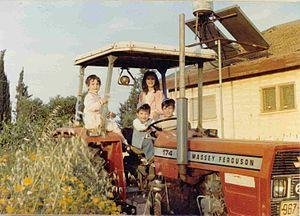 Shibolim - Shibolim in the late 1980s