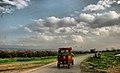 PikiWiki Israel 16955 Transport in Israel.jpg