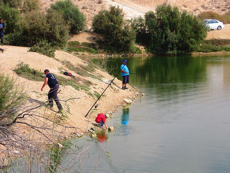 נופי מים במדבר