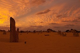 Pinnacles gnangarra-62.jpg