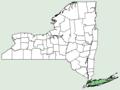 Plantago maritima var juncoides NY-dist-map.png