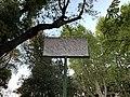 Plaque Viale Ippocastani - Rome (IT62) - 2021-08-30 - 2.jpg
