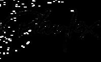 Playtex-mamzonlogo.png