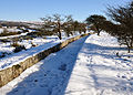 Plymouth Leat in snow 1.jpg
