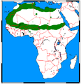 Poecilictis libyca range map.png