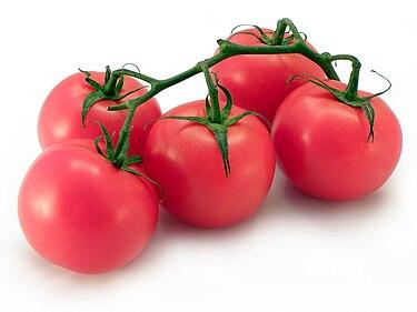 https://upload.wikimedia.org/wikipedia/commons/thumb/6/66/Pomidory_-_tomato.jpg/375px-Pomidory_-_tomato.jpg