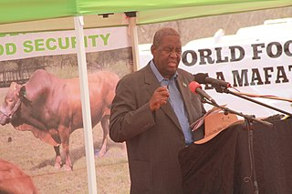Ponatshego Kedikilwe 7th Vice President of The Republic of Botswana