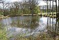 Pond near Bough Beech Reservoir - geograph.org.uk - 1256919.jpg