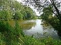Pond near Frogmore - geograph.org.uk - 896277.jpg