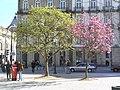 Porto (3782362217) (2).jpg