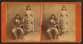 Portrait of Indian man and woman, with playing cards, from Robert N. Dennis collection of stereoscopic views.png