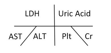 LDH/Uric Acid/AST/ALT/Plt/Cr