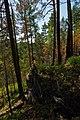 Prigorodnyy r-n, Sverdlovskaya oblast', Russia - panoramio (66).jpg