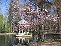Primeros indicios primaverales en Aranjuez - panoramio.jpg
