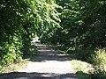 Public Bridleway to Hangman Stone Road - geograph.org.uk - 1382865.jpg