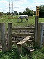 Public Footpath - geograph.org.uk - 509344.jpg