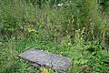 Pushkin Alexander Park Horses Cemetery 07.jpg