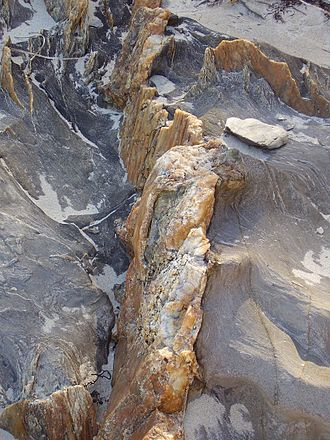 Vein (geology) - A quartz vein, prominent from the surrounding weathered rock at Cape Jervis, South Australia