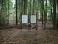Römisches Lager Oberbrechen - Alteburg 042.JPG