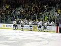 RPI vs. Michigan ice hockey 2014 38.jpg