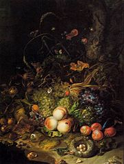 Flowers, fruit,  reptiles, and insects on the edge of a wood