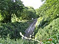 Railway near Greenaway - geograph.org.uk - 23980.jpg