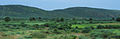 Rajastan - Views from an Indian Western Railway journey on a Monsoon Season (6).JPG