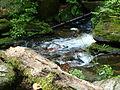 Rešovské vodopády16.JPG