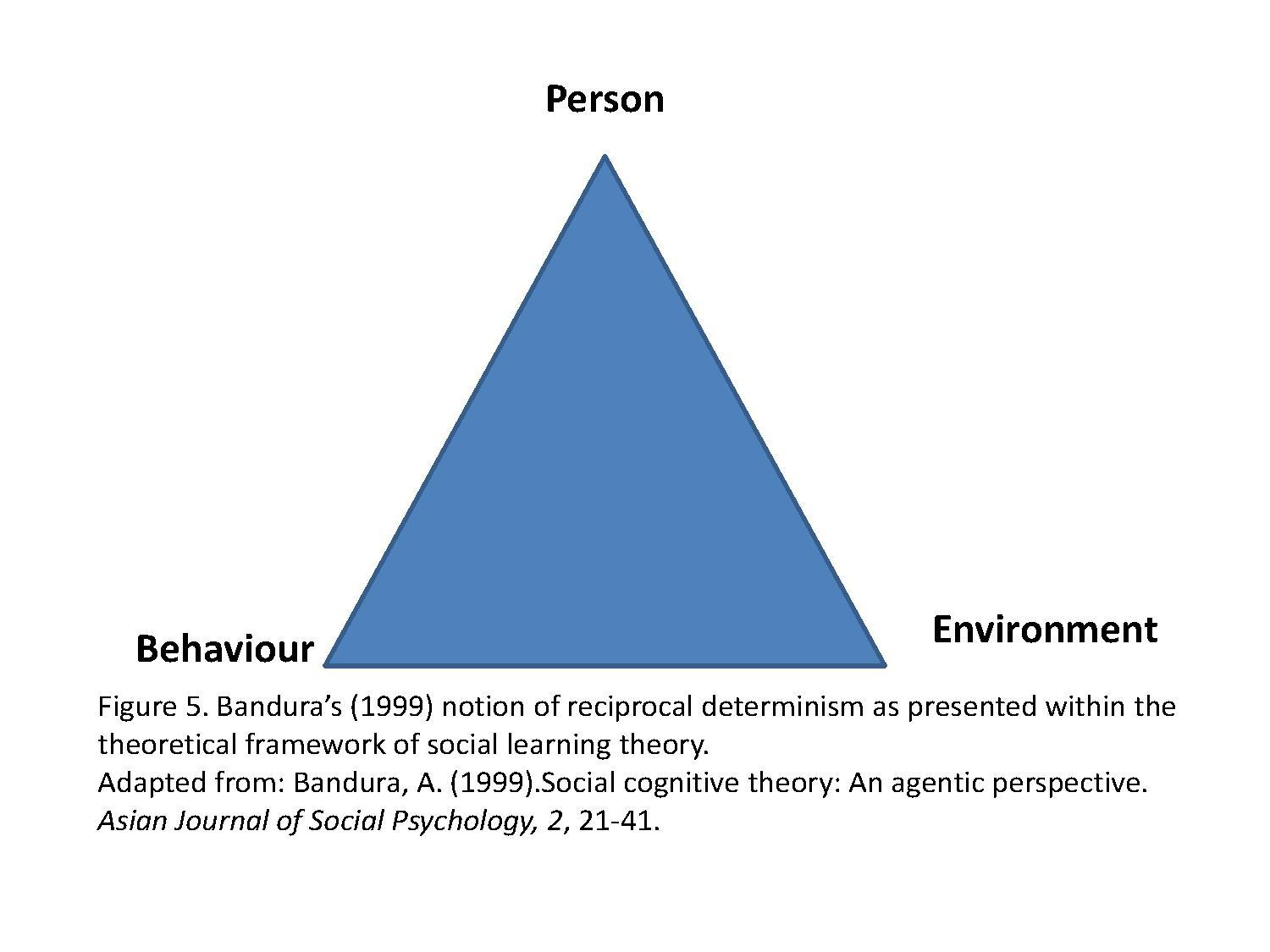 ethnocentric limitations of behavioral social cognitive theory and perspective Social cognitive theory is a subtype of cognitive theory that explains the effects others have on our behaviors it can be used to treat phobias expert opinions differ on exactly what separates social cognitive theory from the more general social learning theory in general, however, these principles.