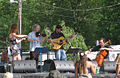 Republic of Strings DelFest 2010.jpg