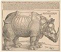 Rhinoceros - AD (monogram). LCCN2002712730.jpg