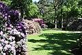 Rhododendronpark Bremen 20090513 153.JPG