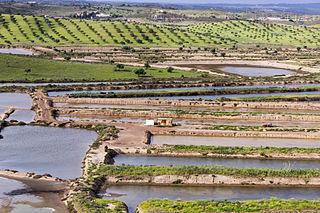 Ria Formosa lagoon in Portugal